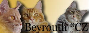 beyrouthbaner
